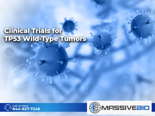 Clinical Trials for TP53 Wild-Type Tumors